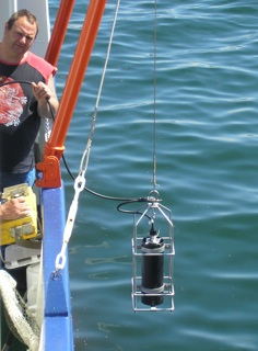 fluoroprobe marine water monitoring
