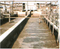 wastewater processing